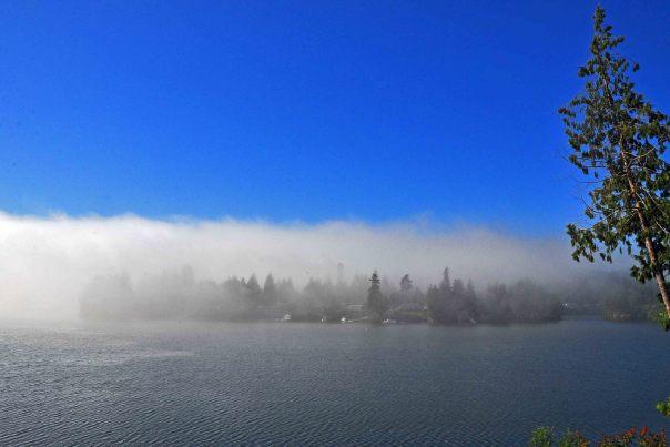 puget sound fog