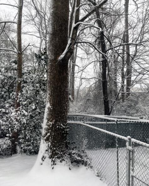 Snow-Jan2018